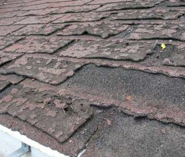 Winter Garden Roof Insurance Claims